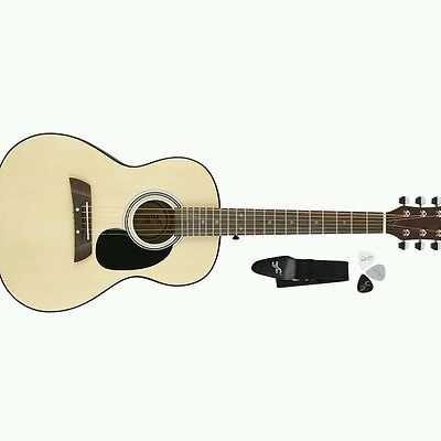 Adam Levine Acoustic Guitar Pack with Strap & Picks by First Act - AL363