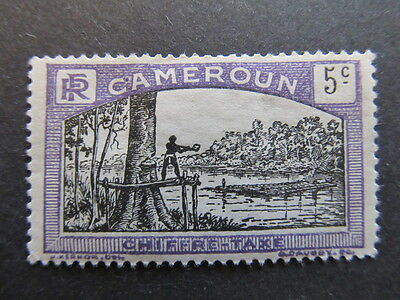 A3P24 French Cameroun Postage Due Stamp 1925-27 5c mh* #47