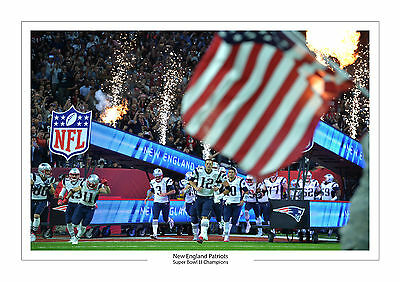 New England Patriots Super Bowl Li 51 Winners A4 Print Photo Tom Brady