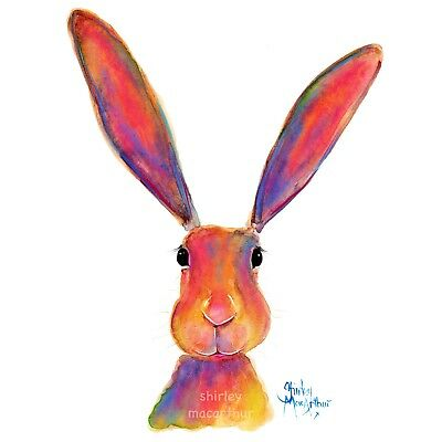 HAPPY HARE PRINTS of Original Watercolour Painting ALL EARS by SHIRLEY MACARTHUR