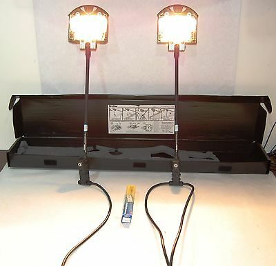 Skyline Halogen Lighting Kit Includes 2 200 Watt Lights