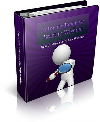 eBook-PDF Master Resell Rights Business Startup 2013