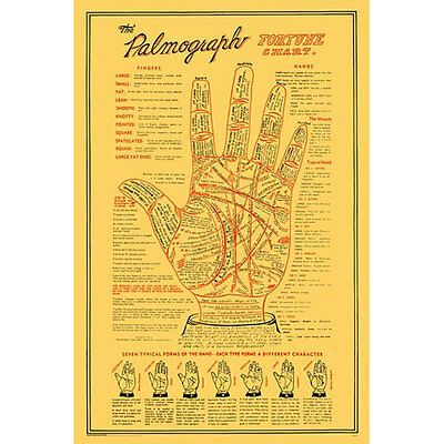 Palmography POSTER 61x91cm NEW * Palmistry Fortune Chart
