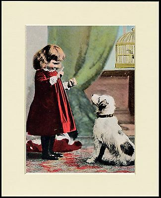Jack Russell Wire Fox Terrier And Little Girl Dog Print Mounted Ready To Frame