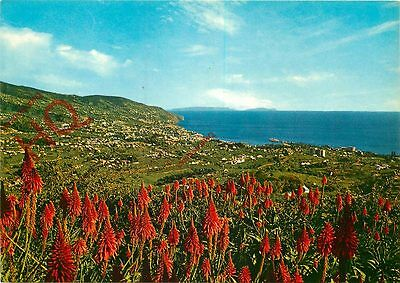 Postcard: Madeira, Funchal, View From Pico Dos Barcelos