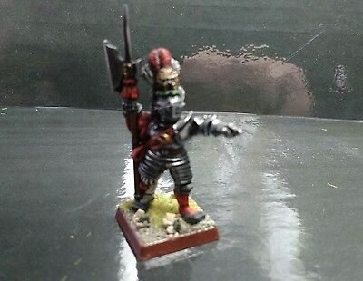 warhammer empire hero, captain pro painted excellent condition