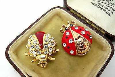 2 X Ladybird Beetle Bug Insect Broches/pins