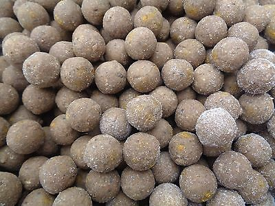 Active Bait Solutions ABS Tuna + N Butyric 20mm Frozen Boilies 10kg Free P+P