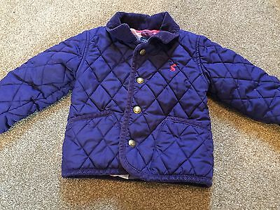 joules padded coat