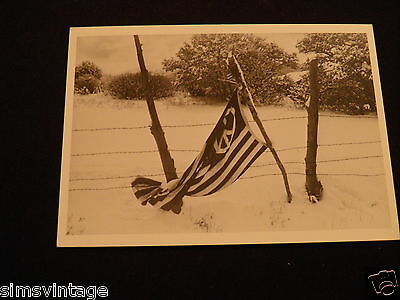 Unusual Weird Postcard Give Peace a Chance 1970 By Lisa Law Flag in Fence