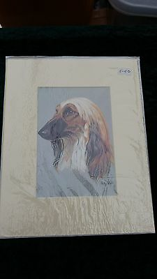 MOUNTED 8 X 10 OIL PAINTING  of AFGHAN HOUND HEAD  DOG