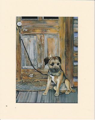 """MOUNTED  8 """" x  10 """" MOUNTED PRINT of A   BORDER TERRIER PUPPY   DOG"""