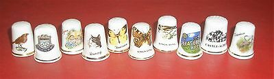 Norfolk Thimbles collection
