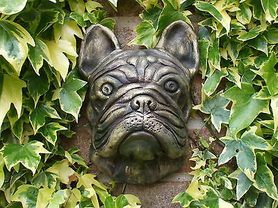 Large Full Size Stone  Bronzed French Bulldog Dogs Head Wall Sculpture