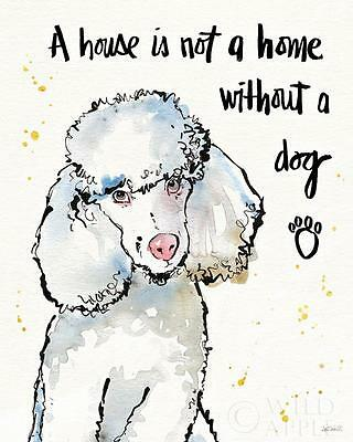 "POODLE FRENCH WHITE DOG FINE ART PRINT - ""A House is not a Home Without a Dog"""