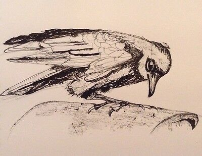 Crow Original Indian Ink Drawing signed