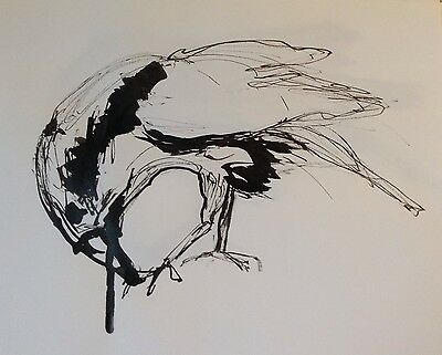 Original Black Ink Crow Drawing signed