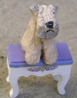 Soft Coated Wheaten  Terrier on a Mini BENCH!