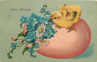 Easter~Yellow Chick Atop Pink Egg Shell Planter~Sniffs Blue Forget-Me-Nots~EMB
