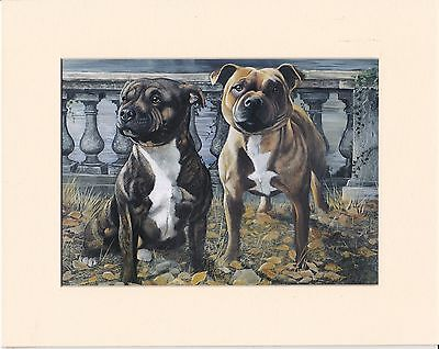 """MOUNTED  8"""" X 10"""" OIL PAINTING PRINT of the STAFFORDSHIRE BULL TERRIERS   DOG"""