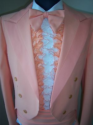 Vintage Peach Tail Tuxedo package -70's style Tail coat, cumb, bowtie & ruffle