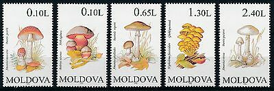 [ST57029] Moldova 1996 Mushrooms Good set of stamps very fine MNH