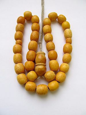 ANTIQUE ISLAMIC PRAYER 33 Beads NATURAL BALTIC AMBER 28gr!!!