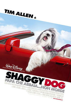 35mm SHAGGY DOG TRAILER/FILM/MOVIE/FLAT/TEASER/BANDE.