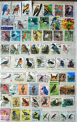 Collection Of  Good Used Stamps Showing Birds, Bird Thematics.