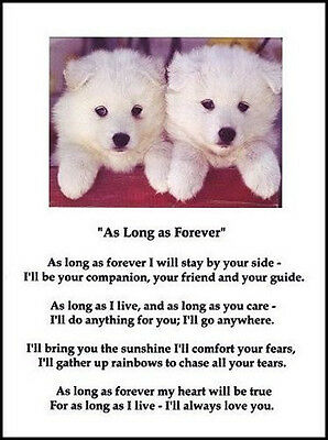 "Beautiful SAMOYED print ""AS LONG AS FOREVER.."" art poem dog puppy NEW!"