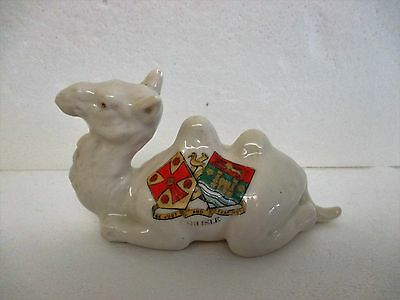 A Resting Crested China Bactrian Camel For Carlisle