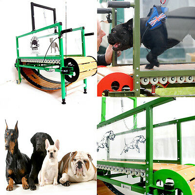 Dog Treadmill PRO Small Med Large pet manual HEALTH jog exercise indoor outdoor