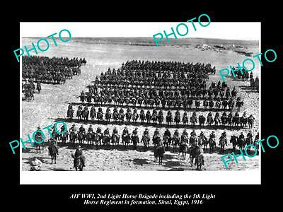 OLD LARGE HISTORIC PHOTO OF WWI ANZAC 2nd & 5th LIGHT HORSE IN EGYPT c1916