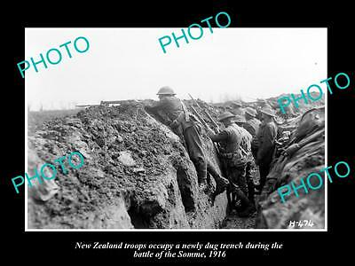 OLD LARGE HISTORIC PHOTO OF WWI NEW ZEALAND ANZAC TROOPS AT THE SOMME c1916