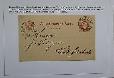 Austria. Fine German-Slovenian stationery card sent from Laibach. 1882.