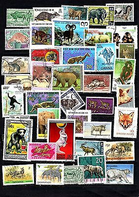 Thematics 40 All Different Collection 45 Animals