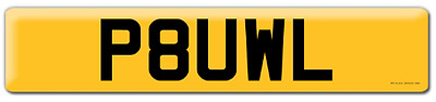 PAUL Private Registration Plate  - ALL TRANSFER FEES ARE PAID -