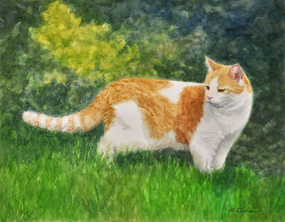 ORANGE AND WHITE CAT ART, CAT PRINT from Watercolor by Artist P. Tarlow