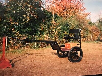 Driving Carriage Exercise Cart