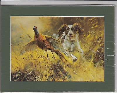 """8"""" X 6"""" MOUNTED  LITHOGRAPH PRINT of  A ENGLISH SPRINGER SPANIEL"""