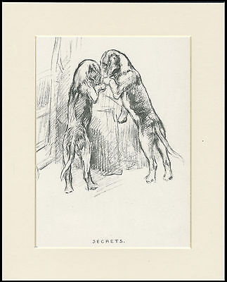 FOXHOUND INQUISITIVE PUPS OLD 1930'S DOG ART PRINT by KF BARKER READY MOUNTED