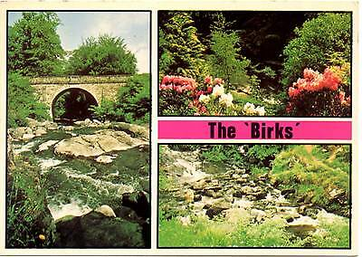 The Birks - Aberfeldy - Scotland - Postcard 1978