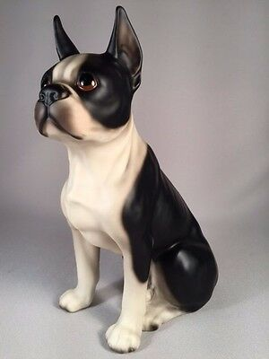Gorgeous Large Vintage Seated Boston Terrier In Matte Finish, Must See!