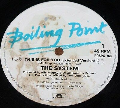 """THE SYSTEM * THIS IS FOR YOU * Classic Soul Funk Boogie 12"""" Vinyl"""