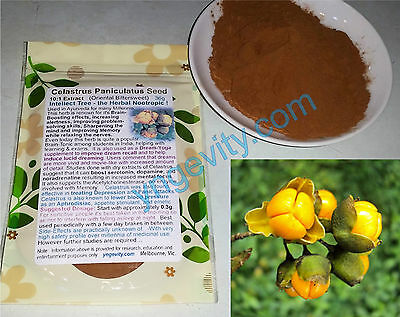 Celastrus Paniculatus Seed 10x Extract Herbal Nootropic Focus Lucid Dreaming 36g