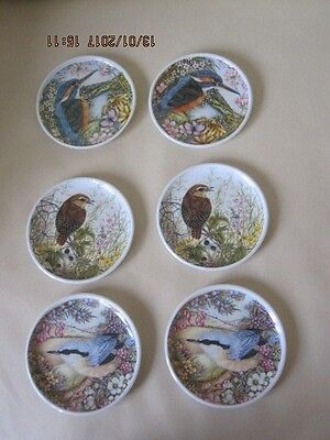 Set Of 6 Vintage Praesidium Melamine Coasters With Wild Birds