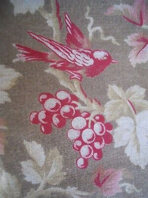 ANTIQUE FRENCH FABRIC COTTON 19TH-century  TEXTILES  BIRDS GRAPPES
