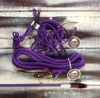 "Parelli Equipment Package Purple ""Carrot Stick,Savvy String, Halter,12' Lead """