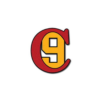FIREFIGHTER HELMET DECAL - FIRE HELMET STICKER  - Charleston 9  -  C9
