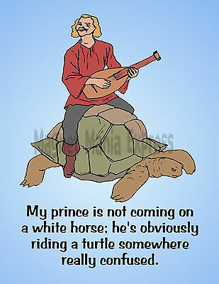 METAL REFRIGERATOR MAGNET Prince Not White Horse On Turtle Confused Friend Humor